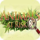 Animals At Risk παιχνίδι