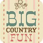 Big Country Fun παιχνίδι