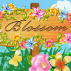Blossom παιχνίδι