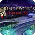Crime Secrets: Crimson Lily παιχνίδι
