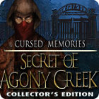 Cursed Memories: The Secret of Agony Creek Collector's Edition παιχνίδι