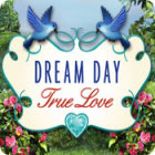 Dream Day True Love παιχνίδι