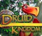 Druid Kingdom παιχνίδι
