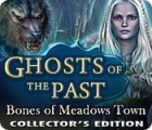 Ghosts of the Past: Bones of Meadows Town Collector's Edition παιχνίδι
