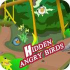 Hidden Angry Birds παιχνίδι