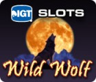 IGT Slots Wild Wolf παιχνίδι