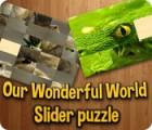 Our Wonderful World παιχνίδι
