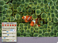 Free download Jigsaws Galore screenshot 3