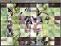 Free download Sliders and Other Square Jigsaw Puzzles screenshot 3